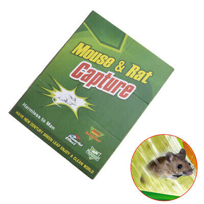 1pc Mouse Sticky Board Rodent Adhesive Glue Trap For Mice Mousetrap Pest Catcher