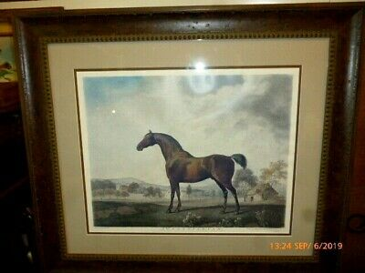 """GEORGE STUBBS 1759 Horses,Hunting Dogs 17/""""x10/"""" ART Antique"""