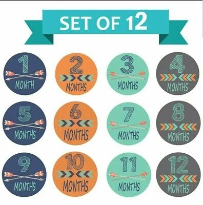 Pregnancy Belly / Baby Milestone Monthly Stickers - Great Shower Gift- US Seller