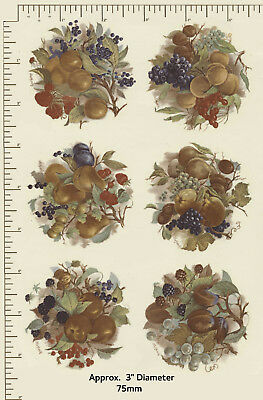 """6 x Waterslide ceramic decals 3"""" Circular suit magnets Fruits / nuts Autumn R71"""