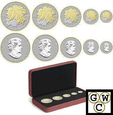 2014 Fractional Set of 5 Silver Maple Leaf .9999Fine Gold-Plated Coins(13307)