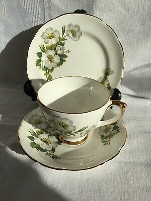 Vintage Delphine Bone China Trio - White Rose Pattern - Beautiful Condition