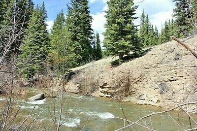Colorado Gold Mine Placer Claim Prime Mining Creek Panning Sluice Nugget Silver