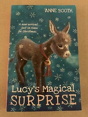 Lucy's Magical Surprise by Booth, Anne Book *Used*