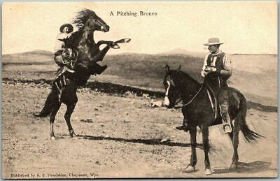 """1910s Western / Cowboy Postcard """"A Pitching Bronco"""" Horse S.S. Pearlstine UNUSED"""