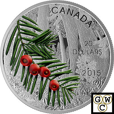 2015 Columbian Yew-Forests of Canada Colorized Prf $20 Sil Coin 1oz .9999(17393)