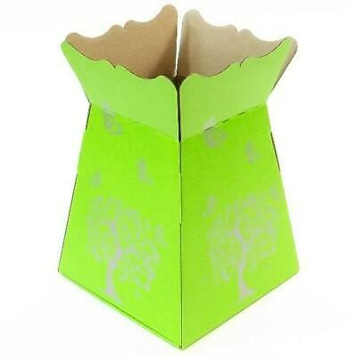 Lime Green -Tree Butterfly- Living Vase - Florist Bouquet Box Flower Sweet Boxes