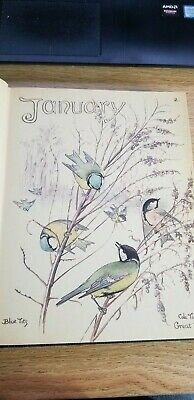 1906 The Country Diary of an Edwardian Lady by Edith Holden (1977) HC excellent