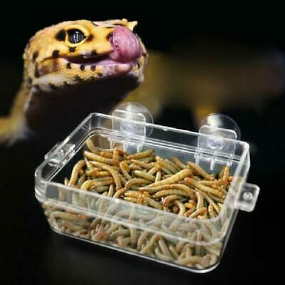 Reptile Feeder Anti-escape Food Bowl Turtle Lizard Worm Live Food Container