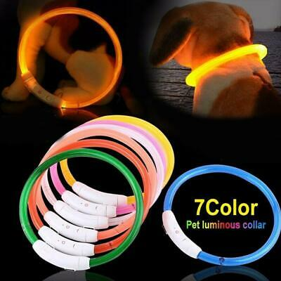 Rechargeable-USB Waterproof LED Flashing Light Band Safety Pet Dog Safety Collar
