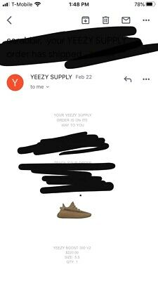 Adidas Yeezy Boost 350 V2 Earth Mens Size 5.5, FX9033