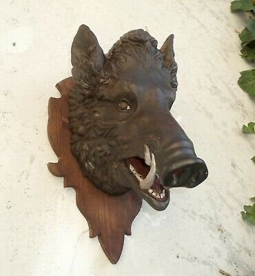Rare Black Forest Carving: Heavy Big Realistically Carved Head Of A Wild Boar