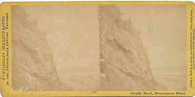 Purviance's PA Central RR Stereoview ca. 1870 * Duncannon Point  #141 Perry Co.