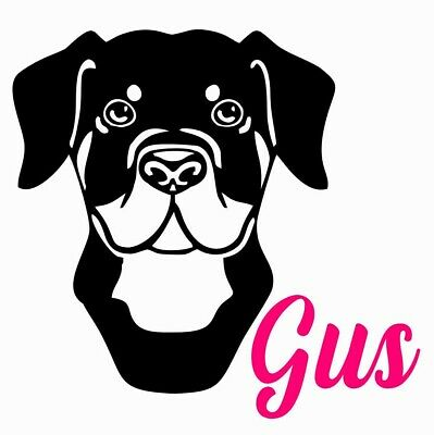 Pointer Dog Decal Sticker Choose Color Size #954