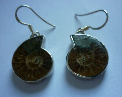 925 Sterling Silver Ammonite Natural Earrings Stamped