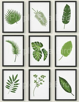 Botanical Leaves Print Tropical Plant Art Decor Picture Monstera Leaf Poster