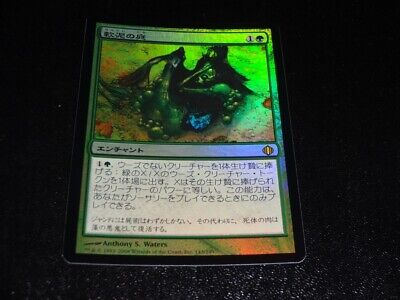 4 Tangle Kelp ^ Blue The Dark Mtg Magic Uncommon 4x x4