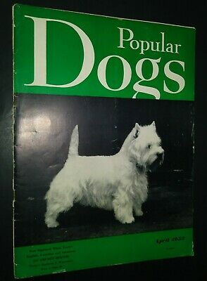 Popular Dogs Magazine Champion West Highland White Terrier Cover Apr 1953