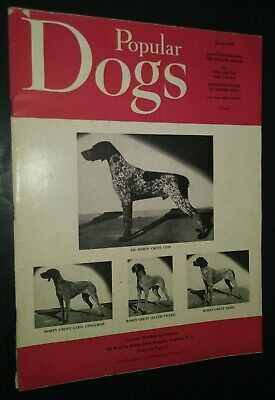 Popular Dogs German Shorthaired Pointers Cover + Champion Photos Mar. 1960