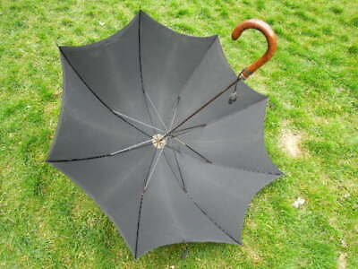 Antique Edwardian Gents Umbrella S Fox Paragon with Silver Collar