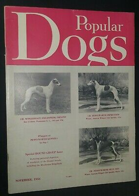 Popular Dogs Illustrated Magazine Whippets Cover + Champion Photos Nov 56