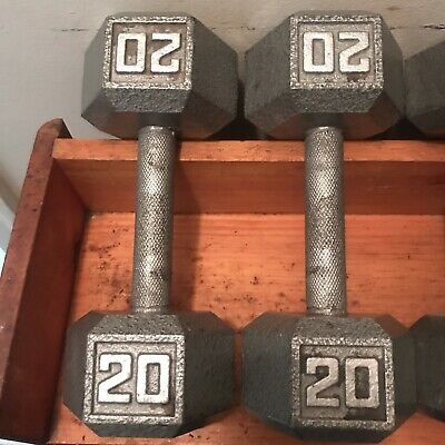 20 Lb Pound Cast Iron Hex Dumbbells Arm Curl Hand Pair Free Weights