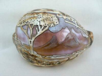 Superb Vintage Tourist Hand Carved Cowrie Shell.