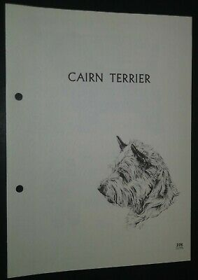 Cairn Terrier RAS Kennel Control Breed Standards M Davidson Ill