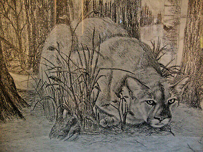 1983 FRAMED & SIGNED 18 X 24 MOUNTAIN LION / COUGAR DRAWING by DELVEA 186/200