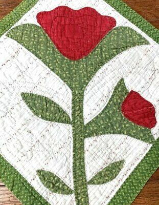 Early ALBUM 1800s Antique Quilt pc Turkey Red Green