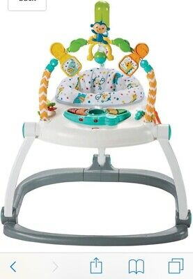 Fisher-Price CHN38 Rainforest Spacesaver Jumperoo Portable Baby Chair