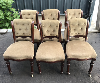Antique Set Of 6 Mahogany Edwardian Dining Chairs With Padded Backs