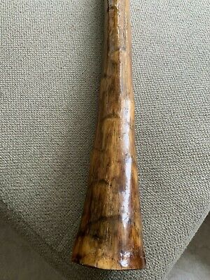 Hand Made Agave Didgeridoo (Excellent Condition) Key C