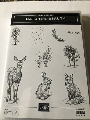 Stampin Up Nature's Beauty