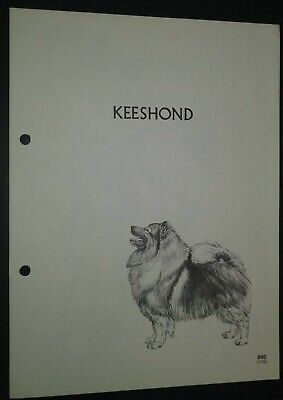 Keeshond RAS Kennel Control Breed Standards M Davidson Ill