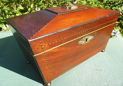 Antique Tea Caddy crossbanded herringbone SARCOPHAGUS 19th century SUPER caddie