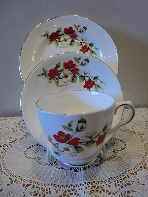 """Collectable Old Royal Bone China Trio """"Sprngtime """" Attractive Pattern Vgc"""