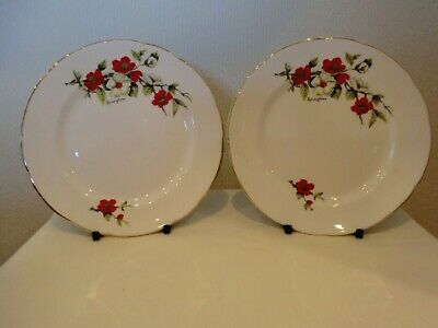 """Collectable Old Royal Bone China """" Springtime"""" Teaplate X 2 Attractive Pattern V"""