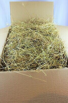 Guinea Pig etc Bedding//Feed Meadow Hay ideal for Rabbit - 8kgs Hay