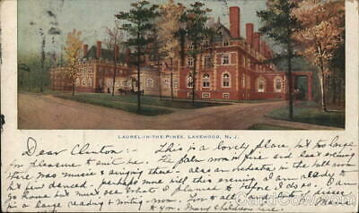 Published by The Post Card Distributing Co. Lakewood N.J 6006 Vintage 1916 Post Card Laurel in the Pines No