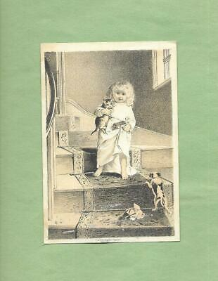 Cute GIRL, CAT, PUPPY DOG On NEW PROCESS SOAP of ALBANY, NY Victorian Trade Card