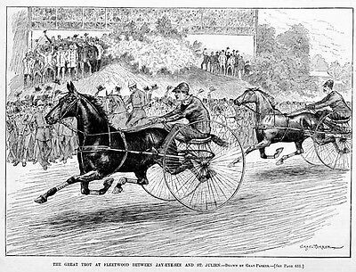 Horse Racing, Trotter Gelding Home Stretch 1883 Antique