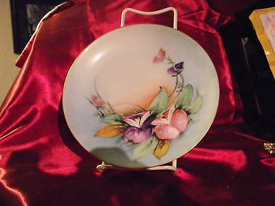 RARE HUTSCHENREUTHER SELB HAND PAINTED PLATE 7.5""