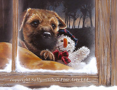 Cute Border Terrier dog Christmas cards pack of 10.  C186x Frosty