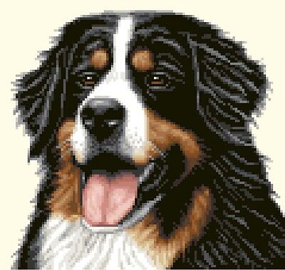 BERNESE MOUNTAIN DOG - full counted cross stitch kit *Jann Designs