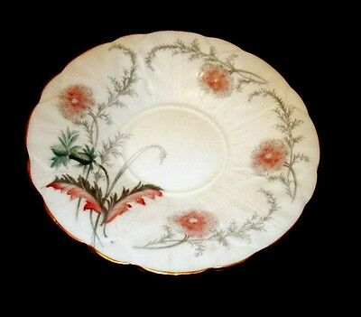 Aynsley Wild Flower Saucer Only