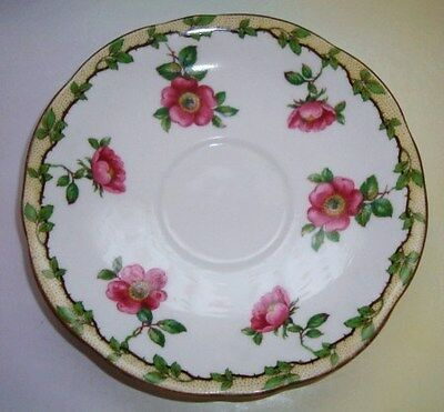 Aynsley Wild Rose Garland Saucer Only