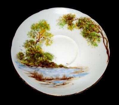 Shelley Old Mill Saucer Only