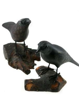 Modern In Wilderness - A Pair Of Thoreau Ravens Crows