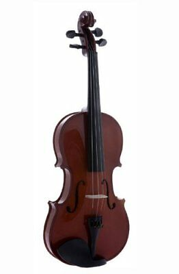 D'Luca Student Violin Outfit with Case and Bow 1/10